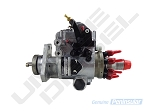 Injection Pump - DB2 250H Or Calibrated (Standard on 250, 270, 310)